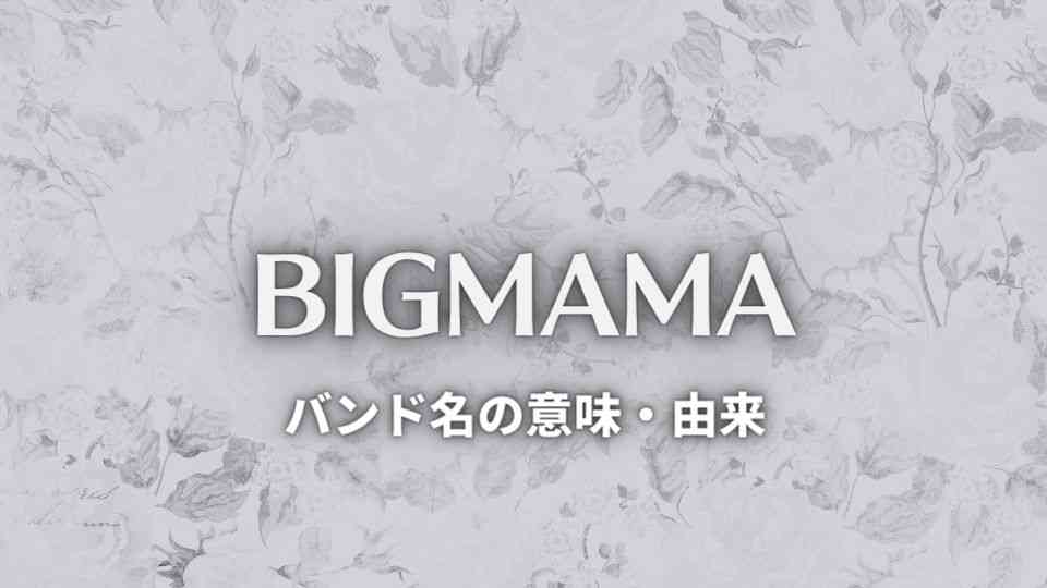 BIGMAMA(ビッグママ)の意味・由来